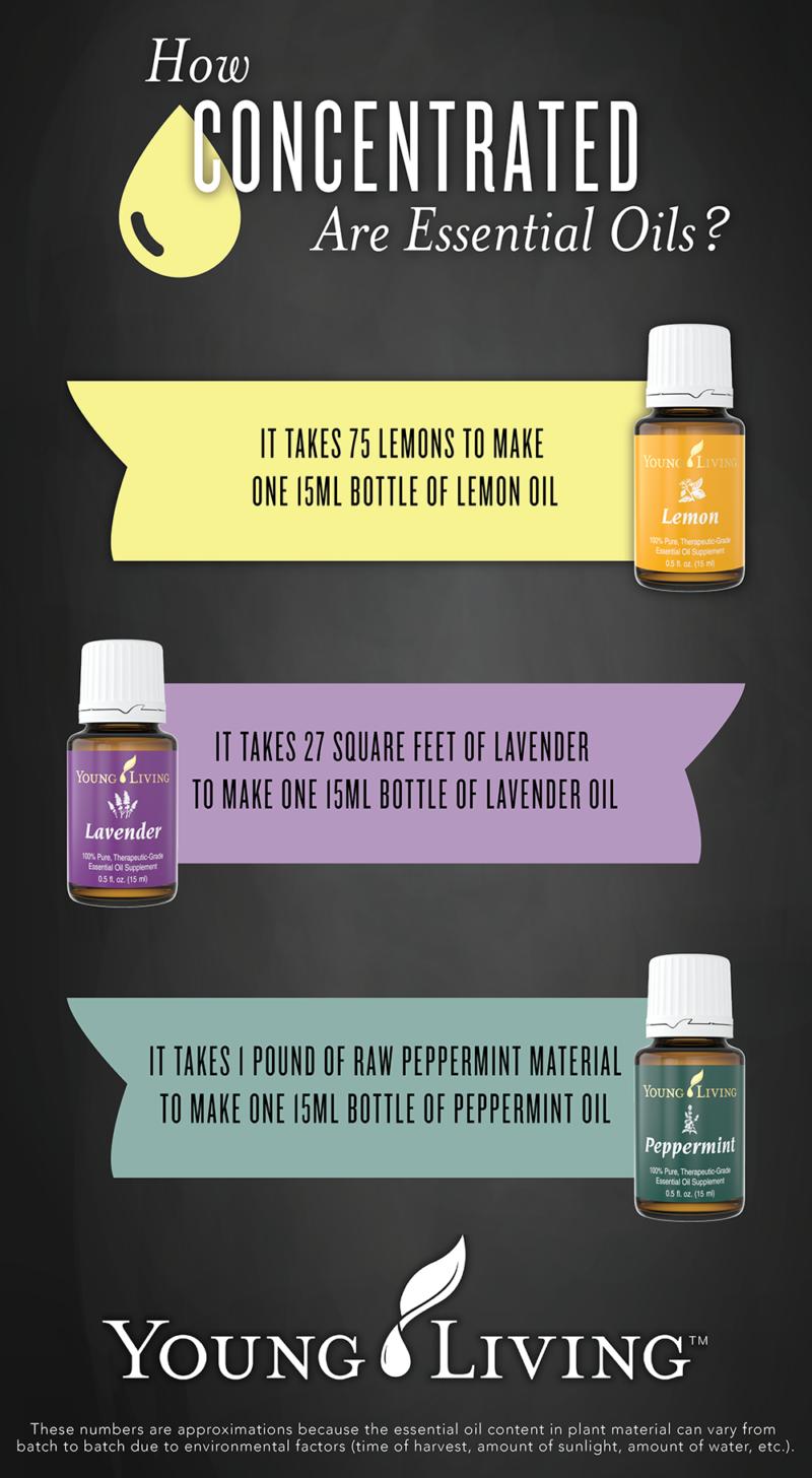 essential-oils-concentration